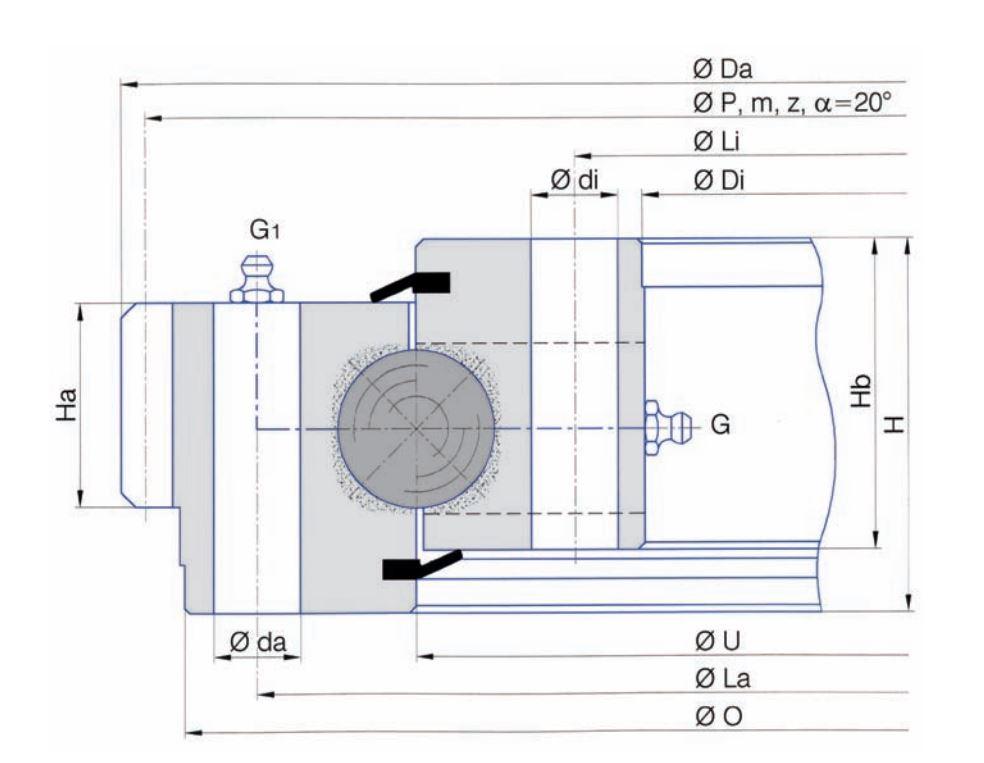 SERIE E.32.D slew bearings